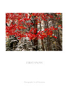 "First Snow (Prints from $35 to $110) Click ""add to cart"" for price list"